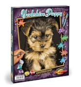 Schipper Malen nach Zahlen - Yorkshire Puppy