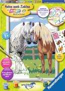 Ravensburger 28566 Malen nach Zahlen Glückliche Pferde