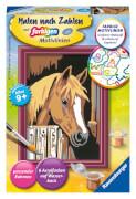 Ravensburger 29685 Malen nach Zahlen: Pferd im Stall