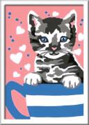 Ravensburger 27781 Malen nach Zahlen Serie F Kleines Kätzchen