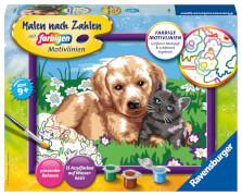 Ravensburger 27789 Malen nach Zahlen Serie D Hund und Katze