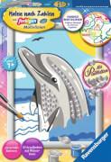 Ravensburger 28472 Malen nach Zahlen Delfin