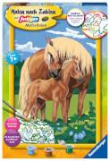 Ravensburger 28911 Malen nach Zahlen Liebevolle Pferde