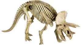 Mini-Ausgrabungsset Triceratops T-Rex World