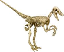 Mini-Ausgrabungsset Velociraptor T-Rex World
