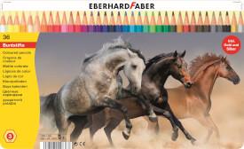 EFA Farbstift hexagonal 36er
