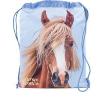 Depesche 6385 Horses Dreams Matchbag
