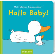 Klappenbuch: Hallo Baby!