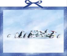 Familie Pinguin und der Weihnachtsbaum, Adventskalender