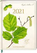 Mein Jahr 2021 - Haselnuss (Sammlung Augustina)
