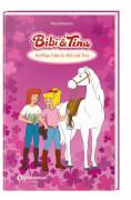 Bibi und Tina B & T - Knifflige Fälle für Bibi und Tina
