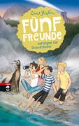 Fünf Freunde verfolgen die Strandräuber Band 14, Gebundenes Buch, 160 Seiten, ab 8 Jahren
