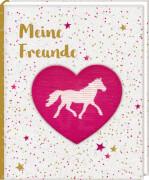 Freundebuch: Pferdefreunde - Meine Freunde  mit Wendepailletten