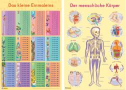 Mein Lernposter: Einmaleins / Der menschliche Körper