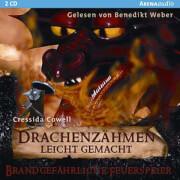 CD Drachenzähmen 5 Hörbuch