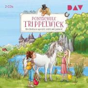 CD Ponyschule Trippelwick 2