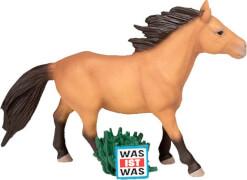 Tonies® WAS IST WAS - Wunderbare Pferde/Reitervo