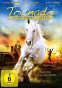 DV Tornado und der Pferdeflüsterer