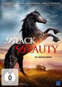 DV Black Beauty