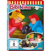 Bibi und Tina: Das Wildniscamp / ... (DVD)