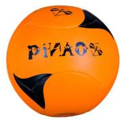 PiNAO Beachvolleyball