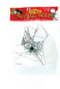 Spinnennetz mit 1 Spinne