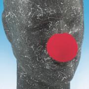 Schaumstoff-Clownnase, rot