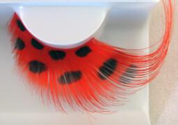 Wimpern, Rote Federn mit schwarzen Punkten