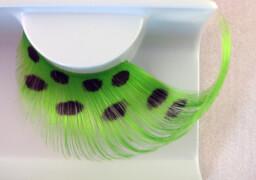 Wimpern, Grüne Federn mit schwarzen Punkten