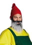 Zwergenbart, Karnevalskostüm