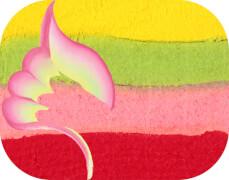Split Cake Blossom, 6ml