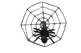 Spinnennetz mit Riesenspinne