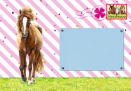 Die Spiegelburg - Einladungskarten Pferdefreunde, 8 Stück