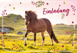 Einladungskarten Pferdefreund