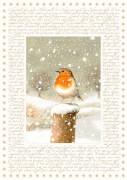 Marjoleins Winterwelt, Adventskalender A4 (Bastin)