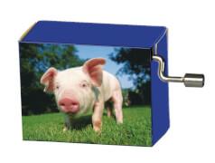 fridolin - Spieluhr - Happy Birthday - Schwein auf Wiese