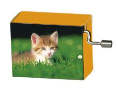 fridolin - Spieluhr - La Le Lu - Katze in der Wiese