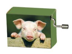 fridolin - Spieluhr - Happy Birthday - Schweinchen