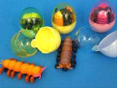 Aufzieh-Tierchen Tausendfüßler im Ei
