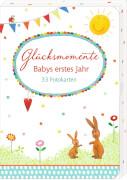Glücksmomente - Babys erstes Jahr (33 Fotokarten)